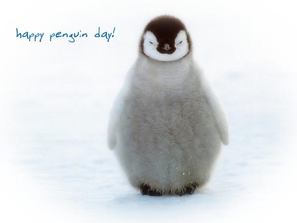 Animal-Penguin-13057-Lo-Fi
