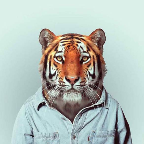 Fashion-Zoo-Animals8